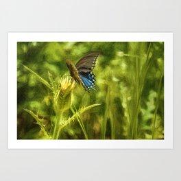 Black Swallowtail No. 2 painterly closer Art Print