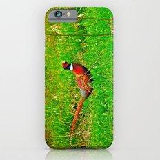 Ringneck Slim Case iPhone 6s