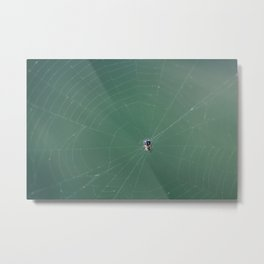 In the spider's net Metal Print