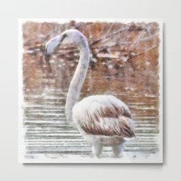 Flamingo Feathers Watercolor Metal Print