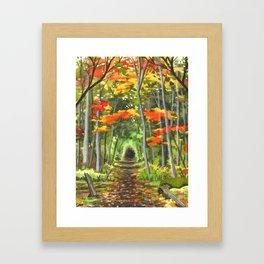 Briars Trail, Oct 18 Framed Art Print