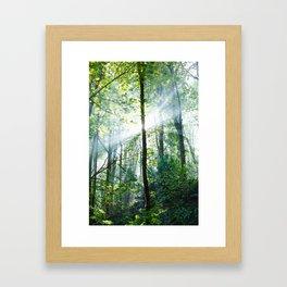 early morning rays Framed Art Print