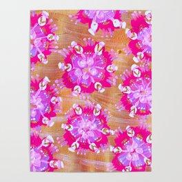 Pink Calliope Rose Poster