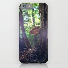 Twilight Fungus iPhone 6s Slim Case