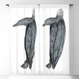 Leatherback turtle (Dermochelys coriacea) Blackout Curtain
