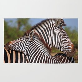 Zebra love, Africa wildlife Rug