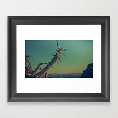 masonry  Framed Art Print