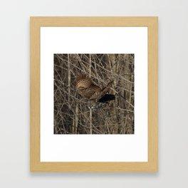 Leap of faith Framed Art Print