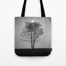 Moon over a tree Tote Bag