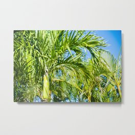 Keanae Palms Maui Hawaii Aloha Metal Print