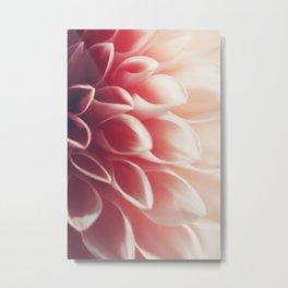 Pink Dahlia #2 Metal Print