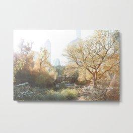 Central Park II Metal Print