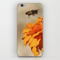 Coming in to land iPhone & iPod Skin