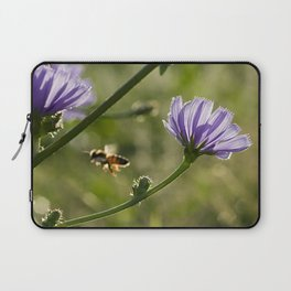 Bee flying on the Chicory flower. Laptop Sleeve