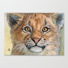 Lion Cub 894 Canvas Print