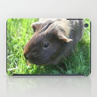 guinea pig iPad Cases featuring Guinea Pig by Rose&BumbleBee