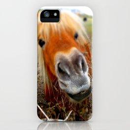 Redhead horse iPhone Case