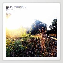 Lens Flare & Train Tracks - Beacon NY Art Print