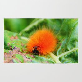 Hairy Caterpillar on Sunflower Leaf Rug