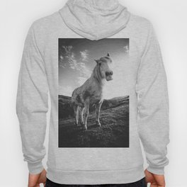 Horse (Black and White) Hoody