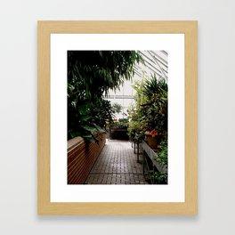 Biltmore Greenhouse Framed Art Print