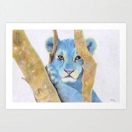 Lion (Cassius) Art Print