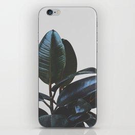 Botanical Art V4 #society6 #decor #lifestyle iPhone Skin