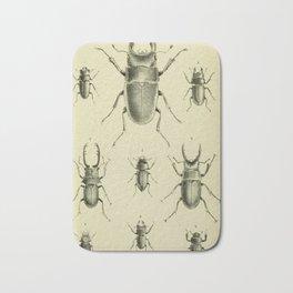 F.J. Sidney Parry - A catalogue of Lucanoid Coleoptera (1864) - Beetle species Bath Mat
