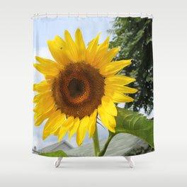 une seule fleur Shower Curtain