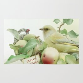 Greenfinch and Apples Rug