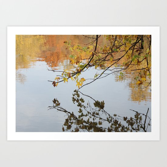 The River During Fall Art Print