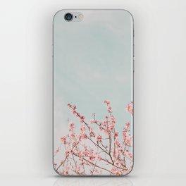 Waving in the Sky iPhone Skin