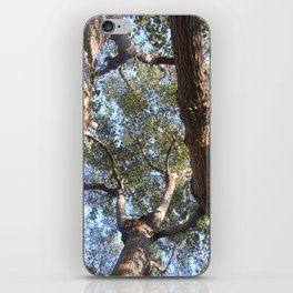A Shattered Sky iPhone Skin