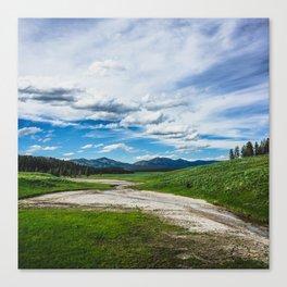 Hayden Valley, Yellowstone National Park Canvas Print