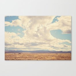 West Texas Canvas Print