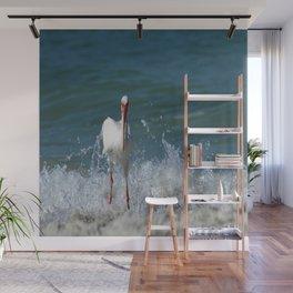 Florida White Ibis Wall Mural