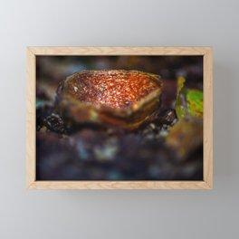 Autumn impressions Framed Mini Art Print