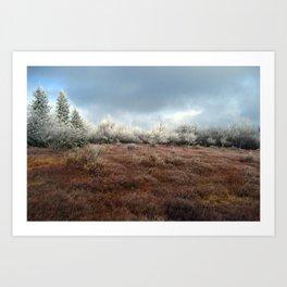 Frosted Horizon Art Print