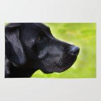 labrador Area & Throw Rugs featuring Black  Labrador by Doug McRae