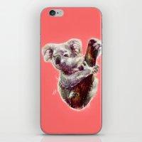 koala iPhone & iPod Skins featuring Koala by beart24
