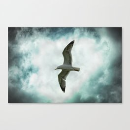 Seagull Before A Cloudy Sky Canvas Print