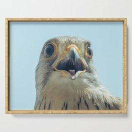 Common Kestrel Portrait Beak Wide Open (Falco tinnunculus) European kestrel. Serving Tray