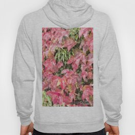 Red climbing ivy leaves Hoody