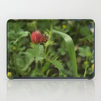 clover iPad Cases featuring Clover by Alison Louise