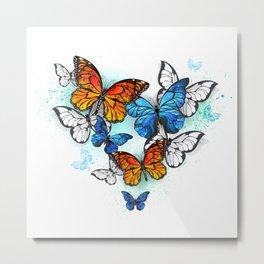 Morpho and Monarchs Butterflies Metal Print