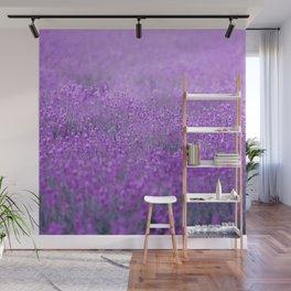 Rain on Lavender Wall Mural
