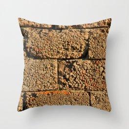 old wall of cinder blocks Throw Pillow