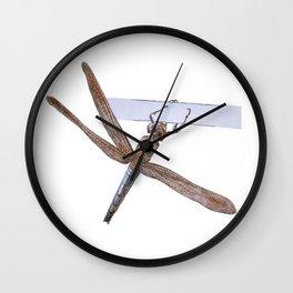 Shy Little Dragonfly Wall Clock