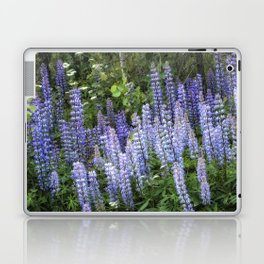 Lupins in Blue and Purple Laptop & iPad Skin