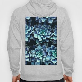 Blue And Green Succulent Plants Hoody